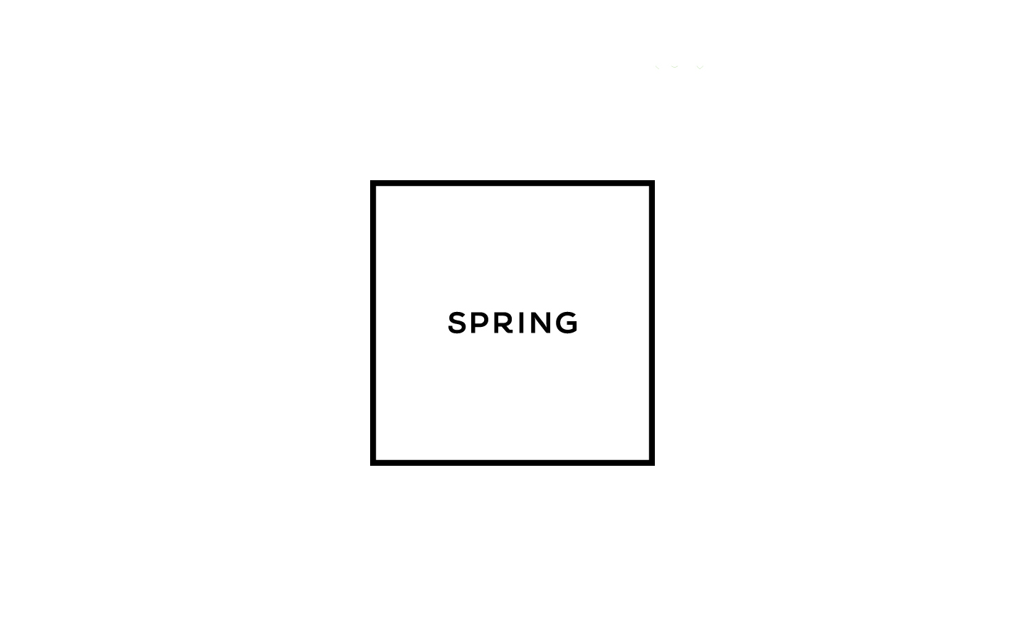 shopspring_8